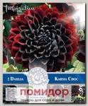 Георгин декоративный KARMA CHOC, 2 шт. NEW