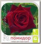 Роза чайно-гибридная БЛЕК БАККАРА, 1 шт.