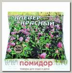 Клевер красный Трубетчинский местный , 0,5 кг
