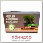 Набор для выращивания микрозелени Горох, 480 г