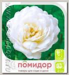 Роза плетистая ШНЕЕВИТХЕН, 1 шт.