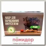 Набор для выращивания микрозелени Редис, 480 г