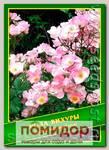 Роза Вихуры, 0,5 г (40 шт.)