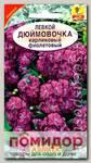 Левкой карликовый Дюймовочка Фиолетовый, 0,1 г